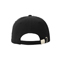 Back - 6991-Low Profile (Uns) Dlx Twill Cap