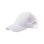 Low Profile (Str) Mesh Cap